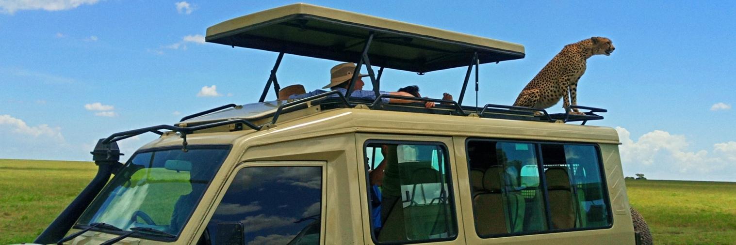 Tanzania Safaris and Tours