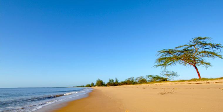 Indian Ocean shores