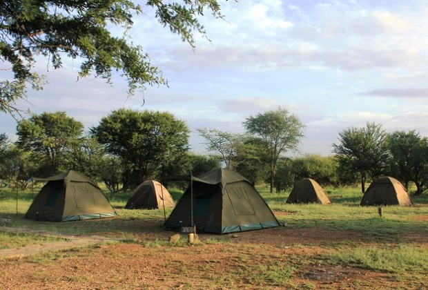 budget safari to Tanzania