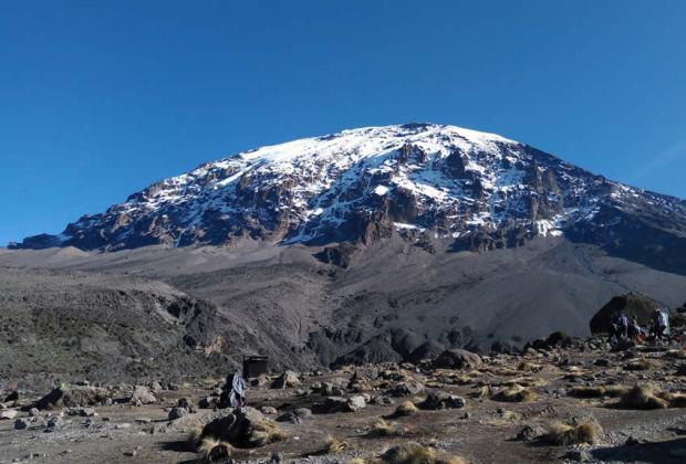 8 Days Kilimanjaro - Lemosho Route