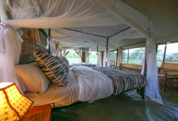 Best tanzania luxury safari