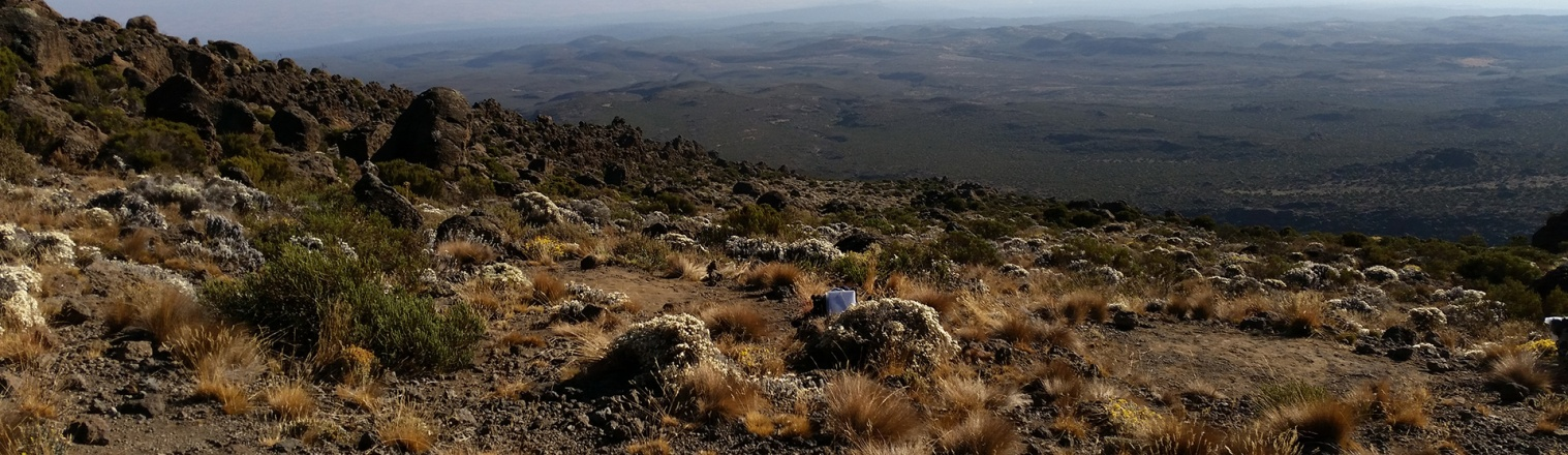 9 Days Kilimanjaro Trekking-Northern Circuit Route