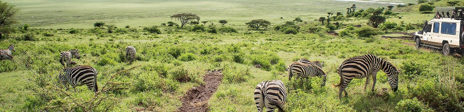 Tanzania Travel Information's