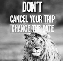 safe tanzania Safari