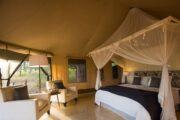 Best Luxury Safaris