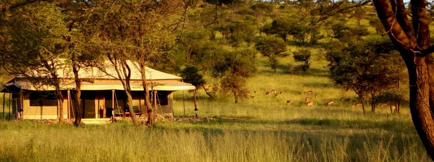 Tanzania Standard Safari